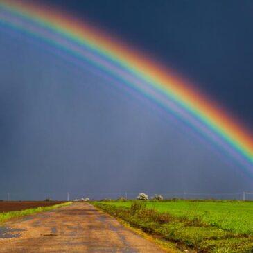 Das Glück des einzelnen ist untrennbar mit dem Glück aller verbunden.